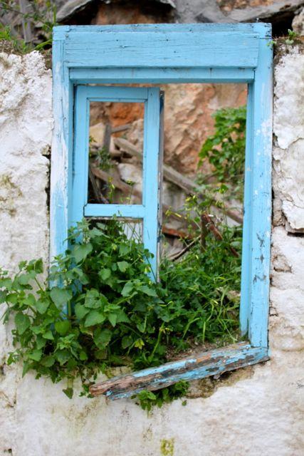 Window- Photo by BreeAnn